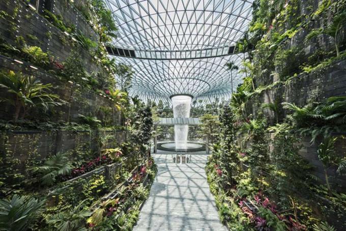 Nổi bậc nhất là khu vực Jewels Forest Valley, một khu vườn 4 tầng với lối đi giữa gần 22.000 m2 rợp cây cối. Đây là một trong những vườn cây trong nhà lớn nhất tại Singapore.