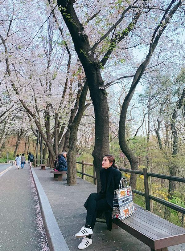Cô còn đi dạo và ngắm hoa anh đào trên con đường lêntháp Namsan.