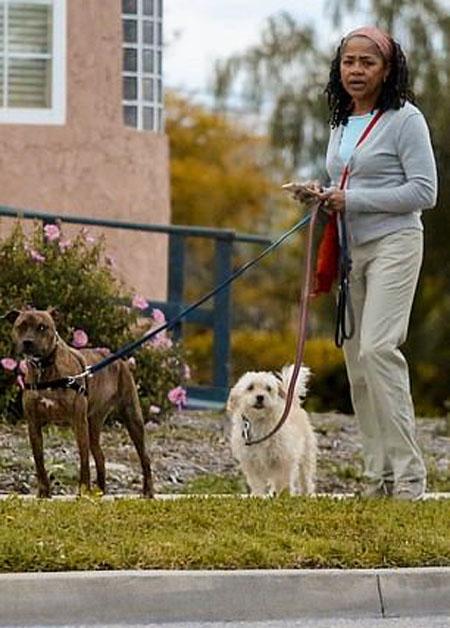 Bà Doria nuôi hai con chó nên khi đến Anh bà đã thuê một người trông nhà và dắt hai con chó đi dạo. Ảnh: Backgrid.