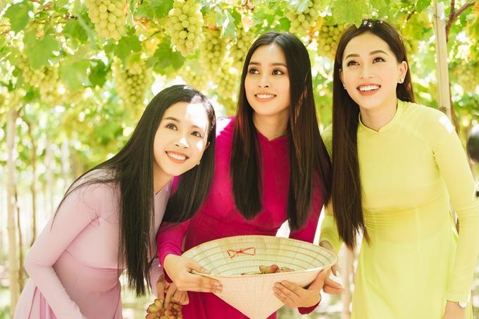 Ninh Thuận là vùng đất nổi tiếng với những vườn nho bạt ngàn, trĩu nặng quả luôn khiến du khách thích thú.