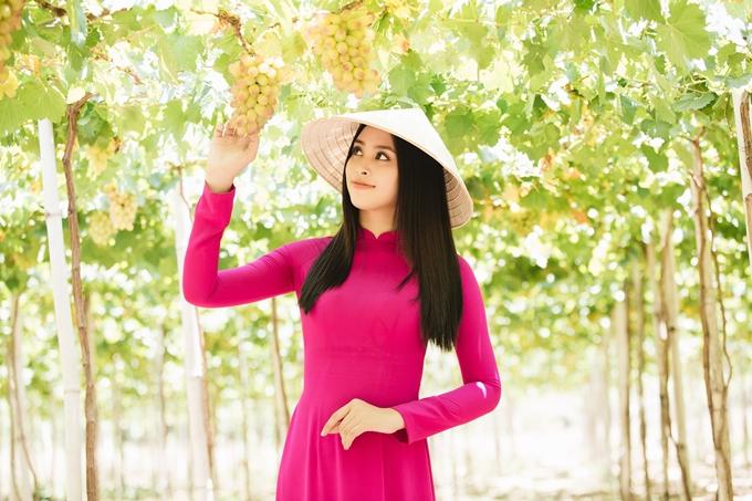 Lễ hội Nho vang diễn ra từ ngày 26/4 đến02/5tại thành phố Phan Rangvà các huyện Ninh Phước, Ninh Hải, Ninh Sơn, Thuận Nam, Thuận Bắc, Bác Ái.