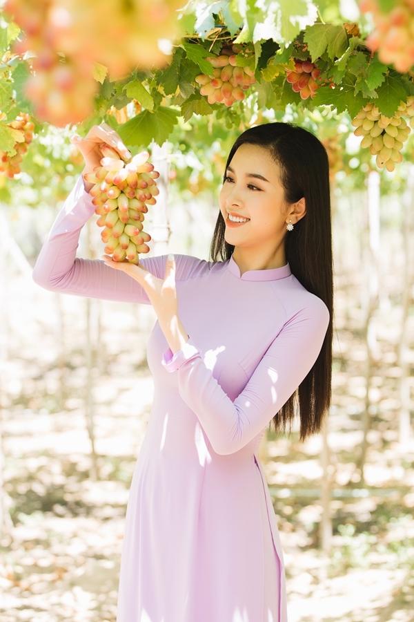 Á hậu Thúy An bật mí nho là trái cây yêu thích của gia đình nên cô mua về biếu bố mẹ, người thân.