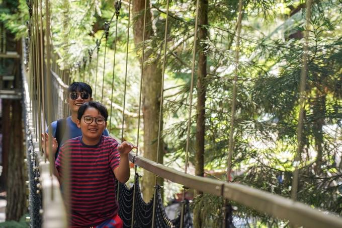 Đến Rừng Whakarewarewa cũng là điểm đến đáng nhớ khi Hoàng Bách cùng Tê Giác được băng qua những cây cầu dây thừng bắt qua những thân cây cổ thụ.