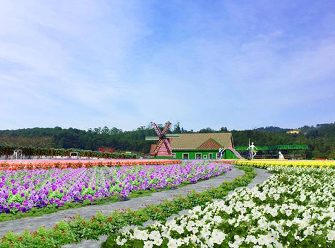 Khám phá Đà Lạt theo tour sẽ giúp du khách tham quan được nhiều điểm đến.