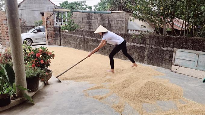 Hình ảnh giản dị của Lê Thúy khi về quê Quảng Bình. Sắp mưa cào lúamau lên mau lên, ngoại bảo thế, nữ người mẫu chia sẻ. Tranh thủ đợt nghỉ lễ dài ngày, cô đưa ông xã về thăm quê từ ngày 29/4.