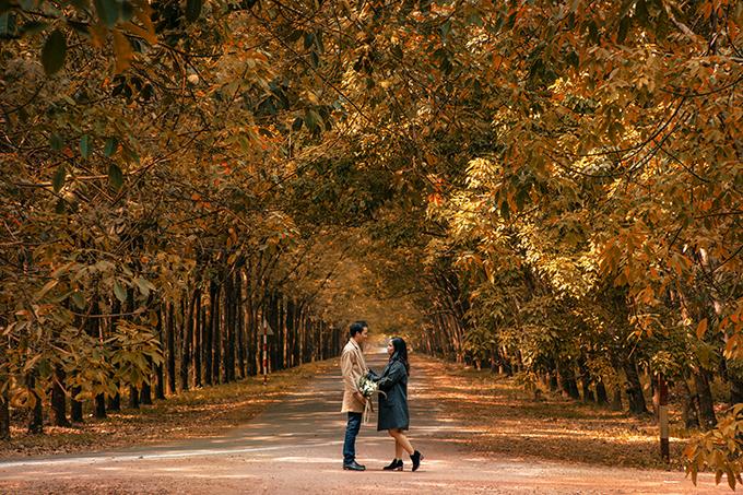 Từ lúc còn nhỏ, tôi đã mong ước được bước đi trong rừng cây lá vàng mùa thu. Tới khi chụp hình cưới, tôi dự định đi nước ngoài để chụp ảnh với bối cảnh lá vàng rơi cho thỏa lòng mong ước nhưng ngân sách không cho phép. May mắn rằng tôi nhìn thấy một vài tấm ảnh được chụp ở Bình Dương với đúng cảnh sắc mình yêu thích và quyết định chụp hình cưới ở đây, cô dâu chia sẻ.
