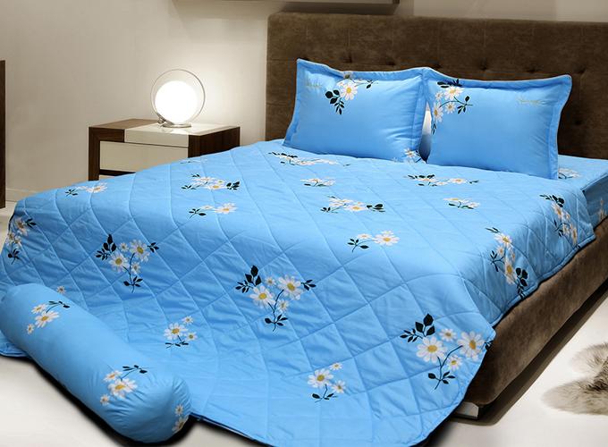 Bộ drap bọc không chần Elegance E05 không chăn giảm còn 410.000 đồng. Kích thước 120cm x 200cm phù hợp cho giường đơn.