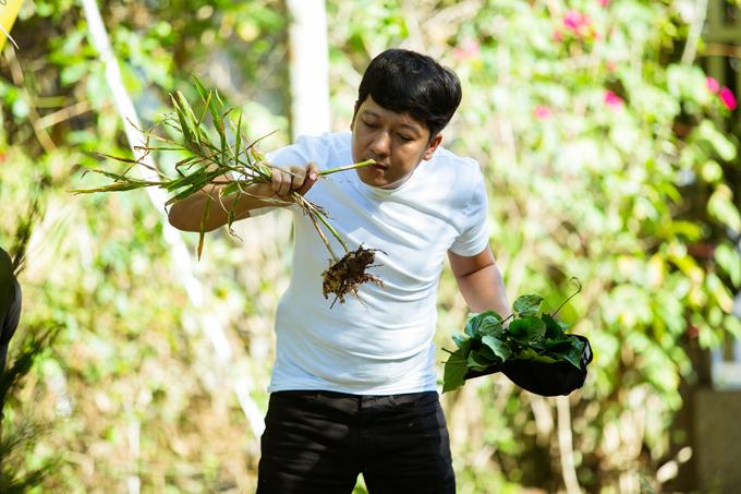 Cả hai cùng đi vòng quanh khu vực nhà dân địa phương để kiếm các nguyên liệu như khổ qua rừng, lá mơ, lá lốt, rau dại...