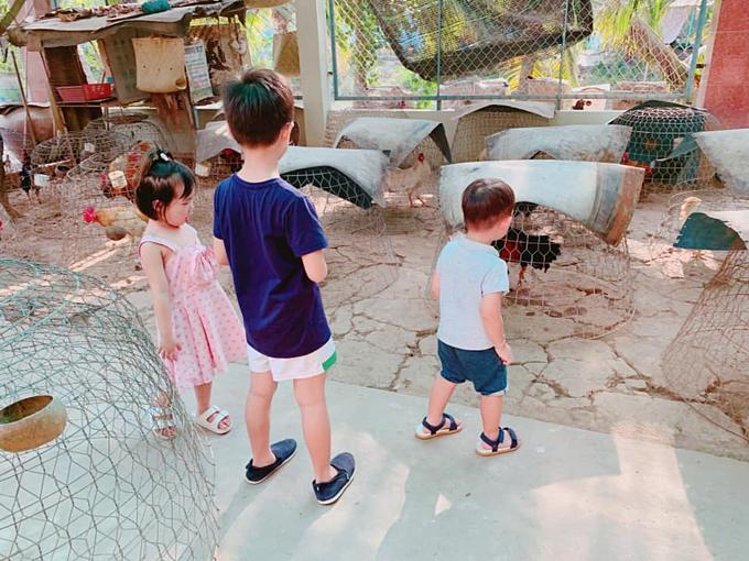 Các bé thích đùa giỡn với các vật nuôi.