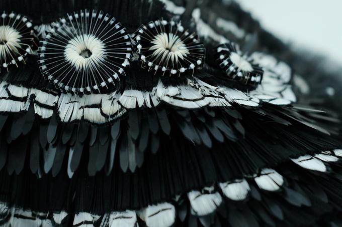 Chất liệu của bộ váy làm từ vải tweed. Phần cầu vai được đính hết khá cầu kỳ theo dạng hình học kết hợp với lông vũ tạo nên sự hài hoà giữa sắc đen trắng. Phần thân được đính trên nền vải tweed bởi hành nghìn viên đá Swarovski.