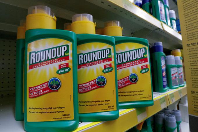 Sản phẩm thuốc diệt cỏ Roundup bị cho là chứa chất gây ung thư của Monsanto thuộc sở hữu của tập đoàn Bayer - Ảnh: Reuters.