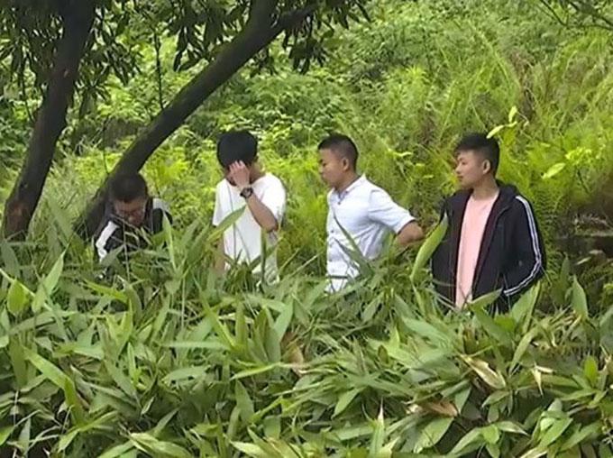Bốn sinh viên ở thành phố Bình Hương tìm thấy trứng khủng long khi đi chơi ở