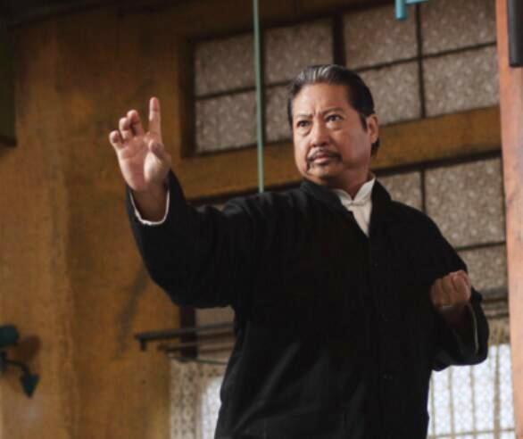 Hồng Kim Bảo là diễn viên, đạo diễn, nhà sản xuất, nhà chỉ đạo võ thuật nổi tiếng Hong Kong. Ngoài việc góp mặt trong nhiều phim hành động tiêu biểu như Hiệp nữ, Long hổ tranh đấu, Tứ đại môn phái..., ông còn là chỉ đạo võ thuật cho phim của các tài tử nổi tiếng như Thành Long, Châu Tinh Trì, Ngô Vũ Sâm...