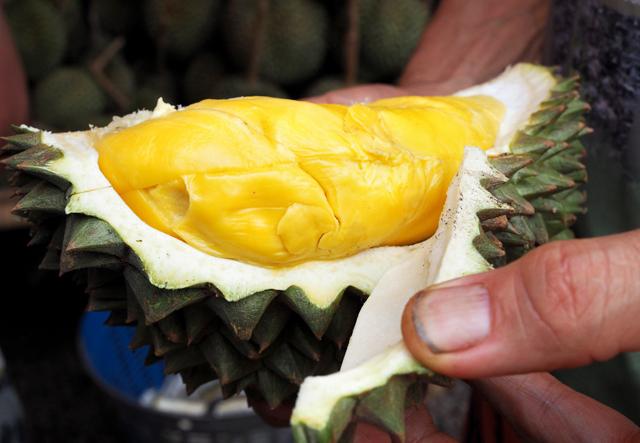 Quả sầu riêng được đấu giá một tỷ đồng ở Thái Lan