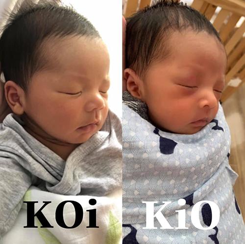 Bé KOi và KiO được ví như anh em song sinh dù cách nhau 1 tuổi.