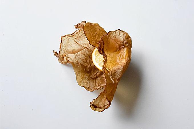 SCOBY là một loại màng bọc sinh học, được làm ra với cách thức tương tự như giấy. Janusz hiện chưa chính thức công bố tên của loại cỏ giúp cô có được hỗn hợp màng bọc này, nhưng cô khẳng định phát minh của mìnhcó thể ăn được.