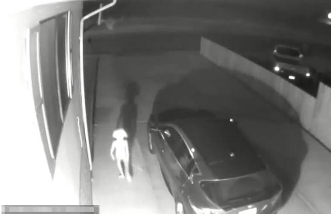Sinh vật kỳ lạ đi khuệnh khoạng bên ngoài ngôi nhà của chị ViVian Gomez ở Mỹ hôm 2/6. Ảnh cắt từ video.