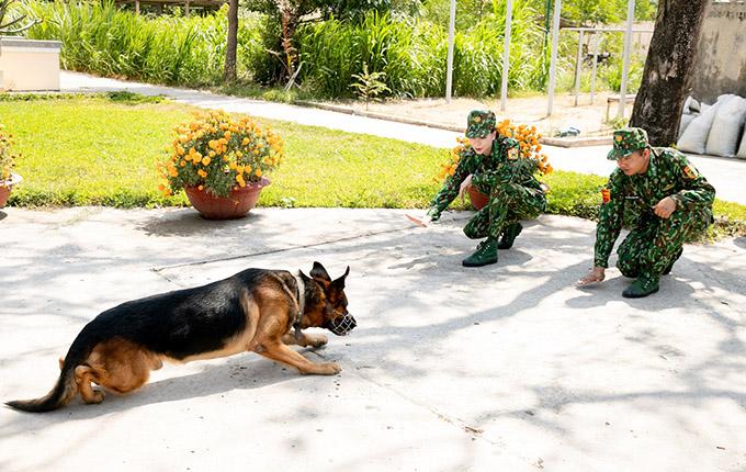 Người đẹp còn được học cách huấn luyện chó nghiệp vụ.