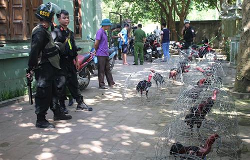 Ngoài 66 người bị bắt cảnh sát xác định gần 30 người đang bỏ trốn.