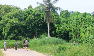 Thi thể người đàn ông phân huỷ trong công viên lớn nhất Thanh Hoá