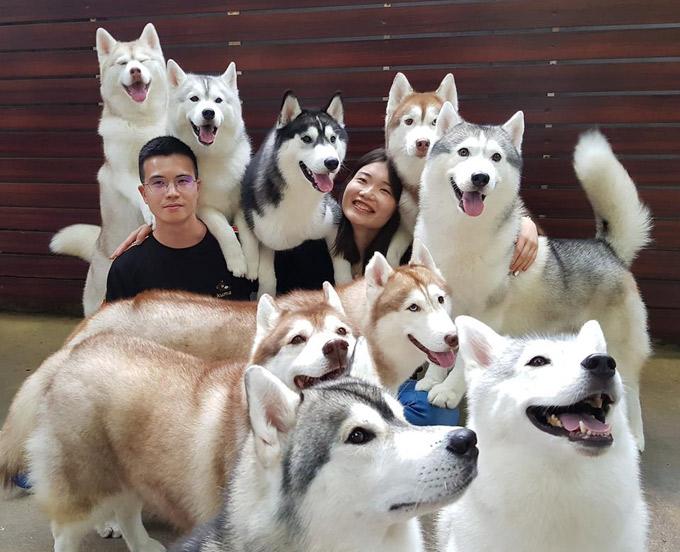 Đông Nhi - Ông Cao Thắng ghé quán cà phê chó husky đáng yêu ở Thái