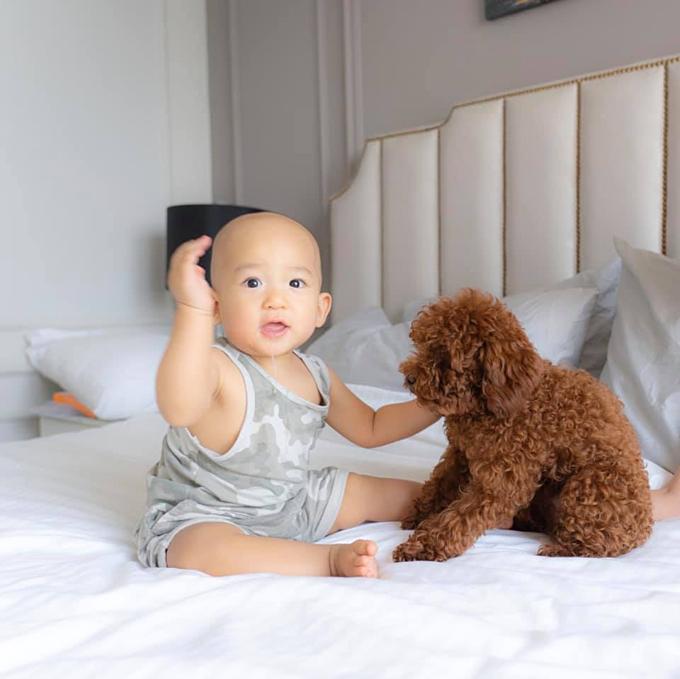 Con trai nhà Thúy Diễm - Lương Thế Thành lần đầu tiếp xúc với chó cưng: Lần đầu chạm vào một em cún của cô hàng xóm, Bảo Bảo thụt thò mãi mới dám đụng. Chạm được một cái thấy