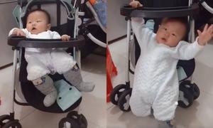 Em bé uốn người trườn khỏi xe đẩy