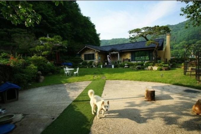 Ngoài ra, Song Joong Ki vàgia đình anh cũng sở hữu một biệt thựrộng 226 mét vuông nằm trong một khu phố sầm uất ở quận Bangbae-dong (Seoul), có giá khoảng 2,5 tỷ won (2,1 triệu USD). Bên cạnh đó, cũng có nguồn tin cho hay Song Joong Ki đã mua một căn nhà riêng ở vùng lân cận thủ đô Seoul, trị giá khoảng 10 tỉ won (203 tỷ đồng) vào tháng 1 năm nay. Căn biệt thự rộng 602 mét vuông, có 2 tầng chính và 1 tầng hầm.