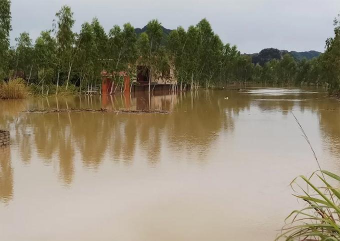 Một góc ở xã Quỳnh Lộc, thị xã Hoàng Mai (Nghệ An) bị ngập nước. Ảnh: Anh Thư.