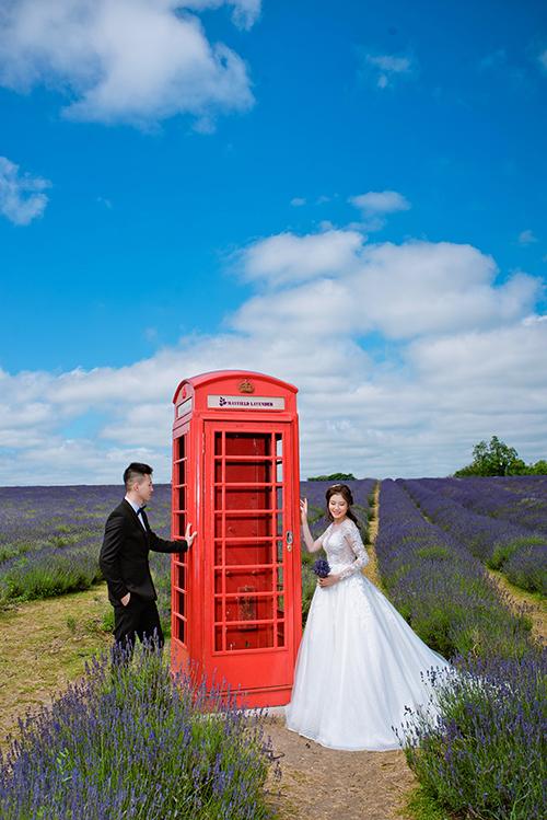Cả hai quyết định chụp hình cưới ở vườn hoa lavender vì đây là nơi đầu tiên Thu Thùy đồng ý trở thành bạn gái của Huy Hoàng.