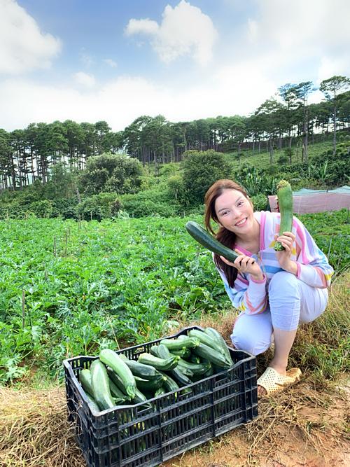 Những thùng rau quả được chị gửi tặng bạn bè và dùng cho gia đình.