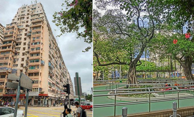 3 con đường mang tên thành phố Việt giữa Hong Kong - 2