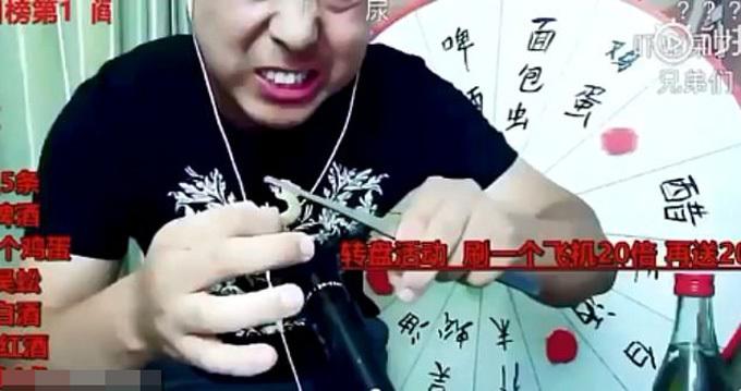 Sun ăn côn trùng sống trong một video livestream. Ảnh: Xinan Evening News.