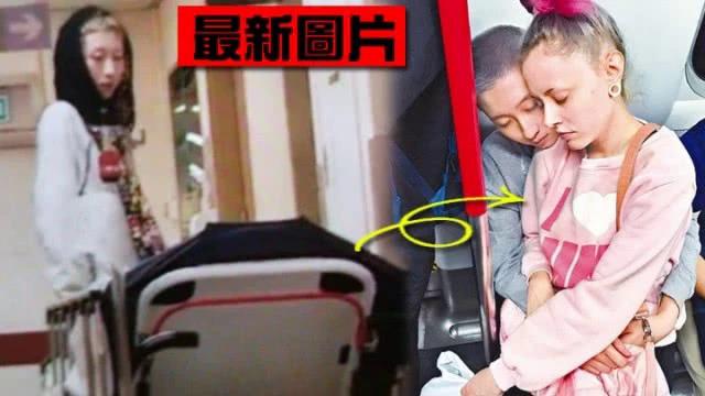 Trác Lâm nhìn vợ nằm trên cáng, trông rất lo lắng.