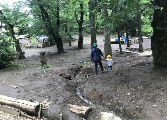 Một số đứa trẻ đến công viên để nghịch bùn và trèo cây.