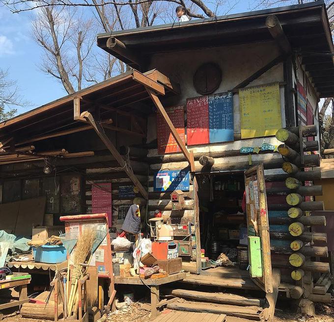 Thiết kế các căn nhà ở đây theo kiểu lắpthanh gỗ zic zắc, để lũ trẻ không cần sử dụng thang vẫn có thể leo lênnóc.