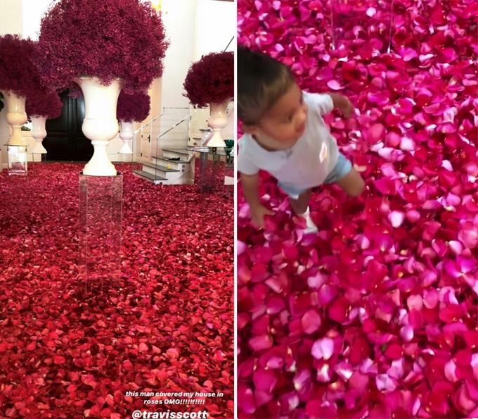 Sàn nhà giống như một dòng sông hoa hồng.