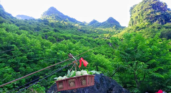 Môt số nhà do vườn na được trồngtrên núi cao nên khi thu hoạch phải làmròng rọc chuyển xuống đất để mang đi tiêu thụ.