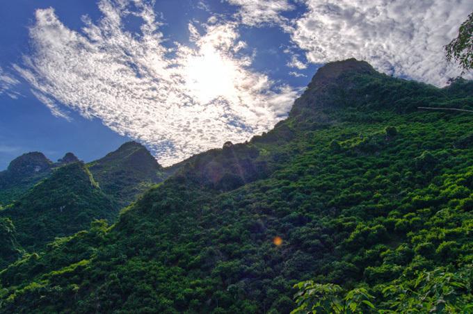Từ tháng 7 đến tháng 9 âm lịch, người dân ở huyện Chi Lăng, tỉnh Lạng Sơn, bắt tay vào thu hoạch vựa na, gồm cả na dai lẫn na bở. Cả huyện có khoảng 1500 ha na, với năng suất thu hoạch khoảng 20000 tấn na mỗi năm, được trồng trên các núi đá vôi.