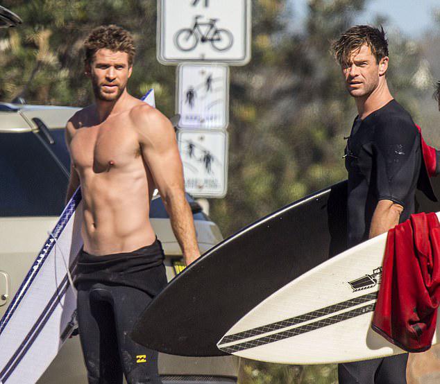 Liam và Chris luôn thân thiết với nhau, hỗ trợ cả trong công việc lẫn cuộc sống. Họ thường xuyên đến dự lễ ra mắt phim tại Hollywood và gia đình hai bên gặp gỡ thường xuyên.