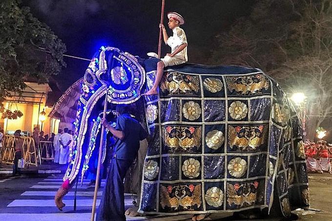 Tikiri được hóa trang với bộ lễ phục rực rỡ trong buổi diễu hành lễ