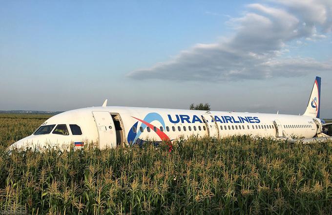 Chiếc A321 của Ural Airlines đậu trên cánh đồng ngô gần sân bay Zhukovsky sau khi gặp sự cố hôm 15/8. Ảnh: Reuters.