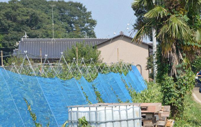 Ngôi nhà nơi cặp vợ chồng Nhật Bản bị tấn công bằng dao vào ngày 24/8 ở tỉnh Ibaraki. Ảnh: Mainichi.