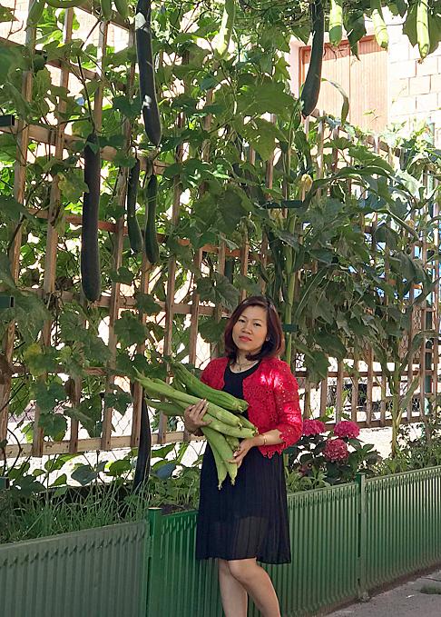 Chị Nga phân chia vườn thành các khu trồng rau ăn lá và cây leo giàn. Dọc hàng rào, chị đặt chậu trồng cây leo giàn như mướp, bí, su su, mướp khía, bầu, đỗ leo và hành củ, rau thơm, ngô, ớt... Rau muống, rau dền, rau đay... được trồng trong nhà kính để thu hoạch được nhanh hơn vì khí hậu ở Séc lạnh.