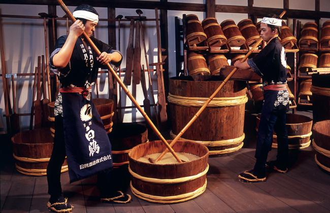Một công đoạn làm rượu Sake.