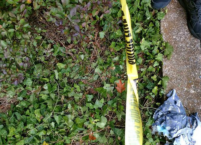Vị trí bé trai 2 tuổi rơi xuống sau khi ngã từ tầng 11 khu chung cư Park Ritchie, bang Alabama, Mỹ. Ảnh: Twitter.
