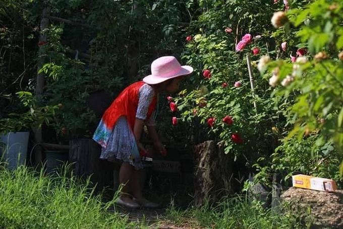 Ông bố một con cho biết anh không chỉ trồng hoa để lấy cảm hứng vẽ tranh mà còn là món quà dành tặng con gái Susu, giúp bé có một tuổi thơ hồn nhiên, đầy ắp kỷ niệm bên vườn hoa hồng ngập sắc thơm hương.