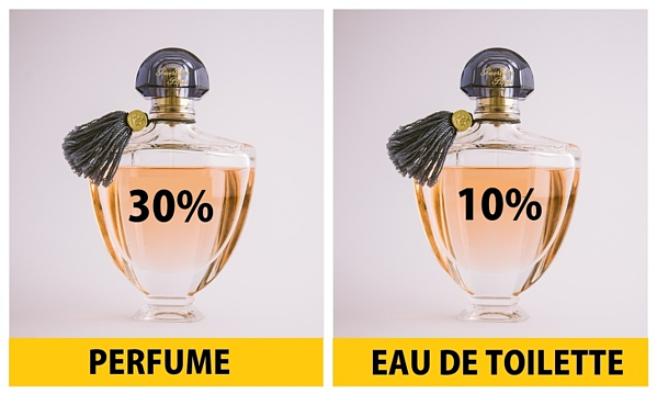 Perfume thường chứa từ 22 - 40% tinh chất