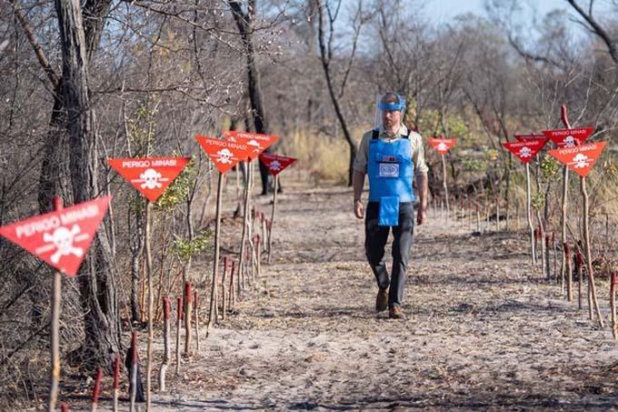 Harry bước đi ở bãi bom mìn đang được gỡ bỏ ở Angola sáng 27/9. Ảnh: PA.