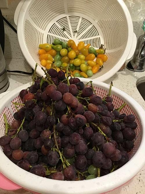 Nho và cà chua bi đều được hái từ vườn nhà. Quả nhỏ, ngọt thanh và sạch 100%.
